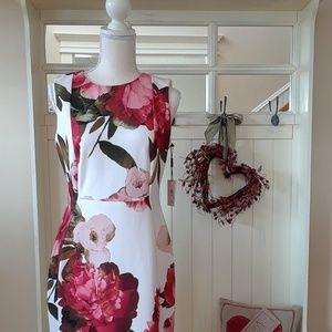NWT! Calvin Klein Floral Sheath Dress